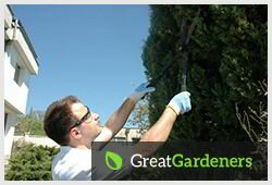 Exceptional Gardening Services around Guildford GU1