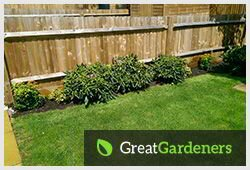 Adept Gardening Services for Every Guildford GU1 Home
